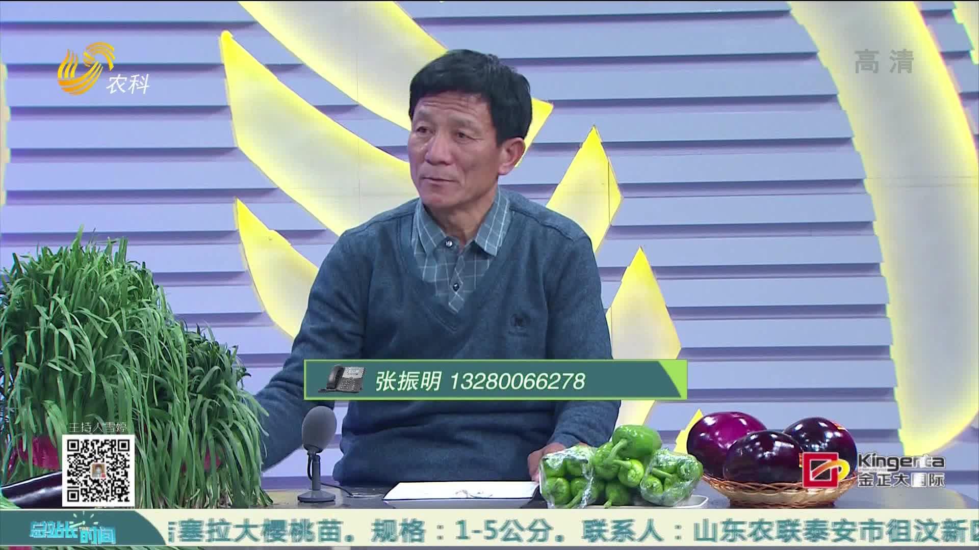"""20210228《总站长时间》:宏晟农贸——""""持证上岗""""的韭菜"""