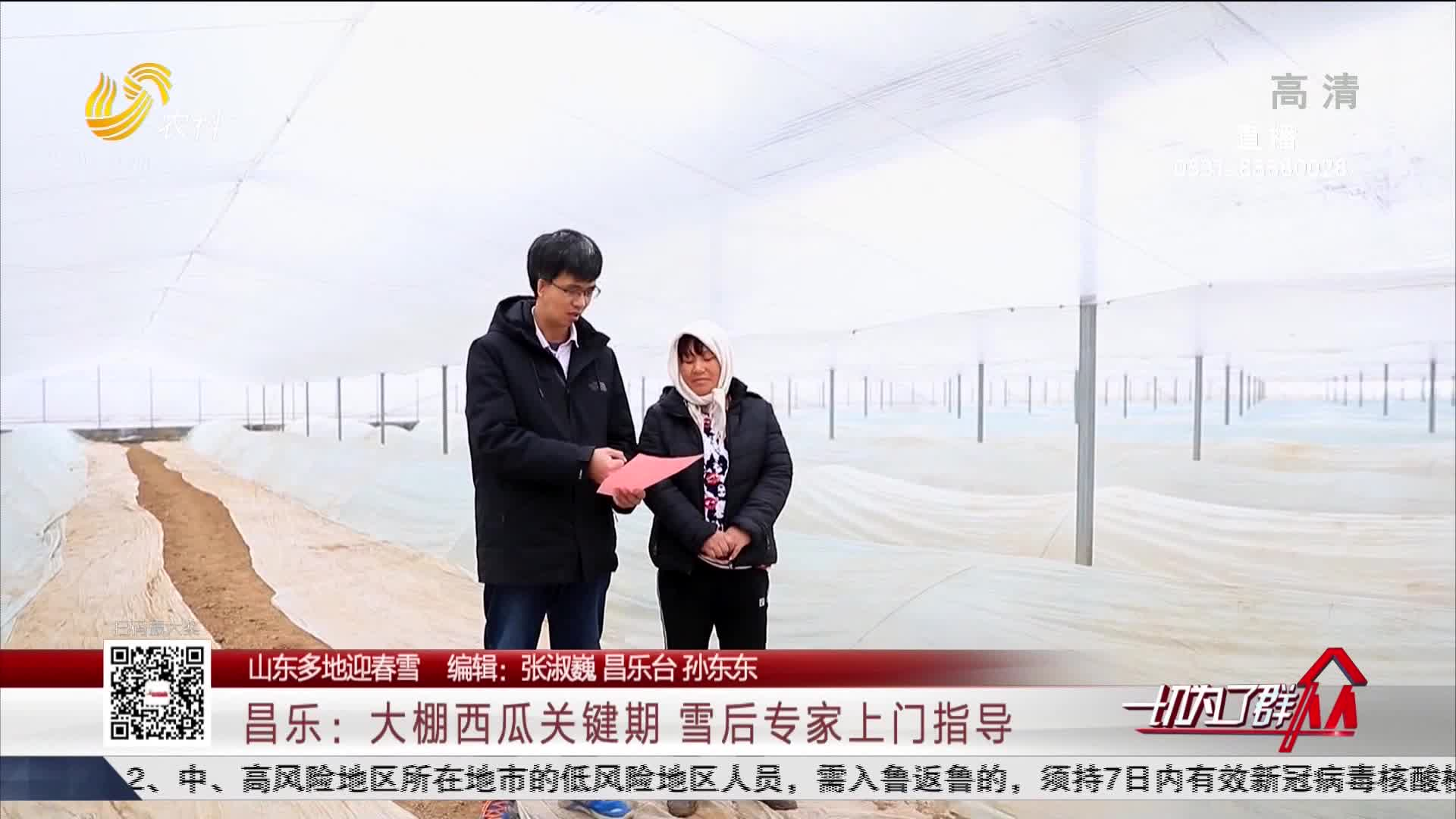 【山东多地迎春雪】昌乐:大棚西瓜关键期 雪后专家上门指导