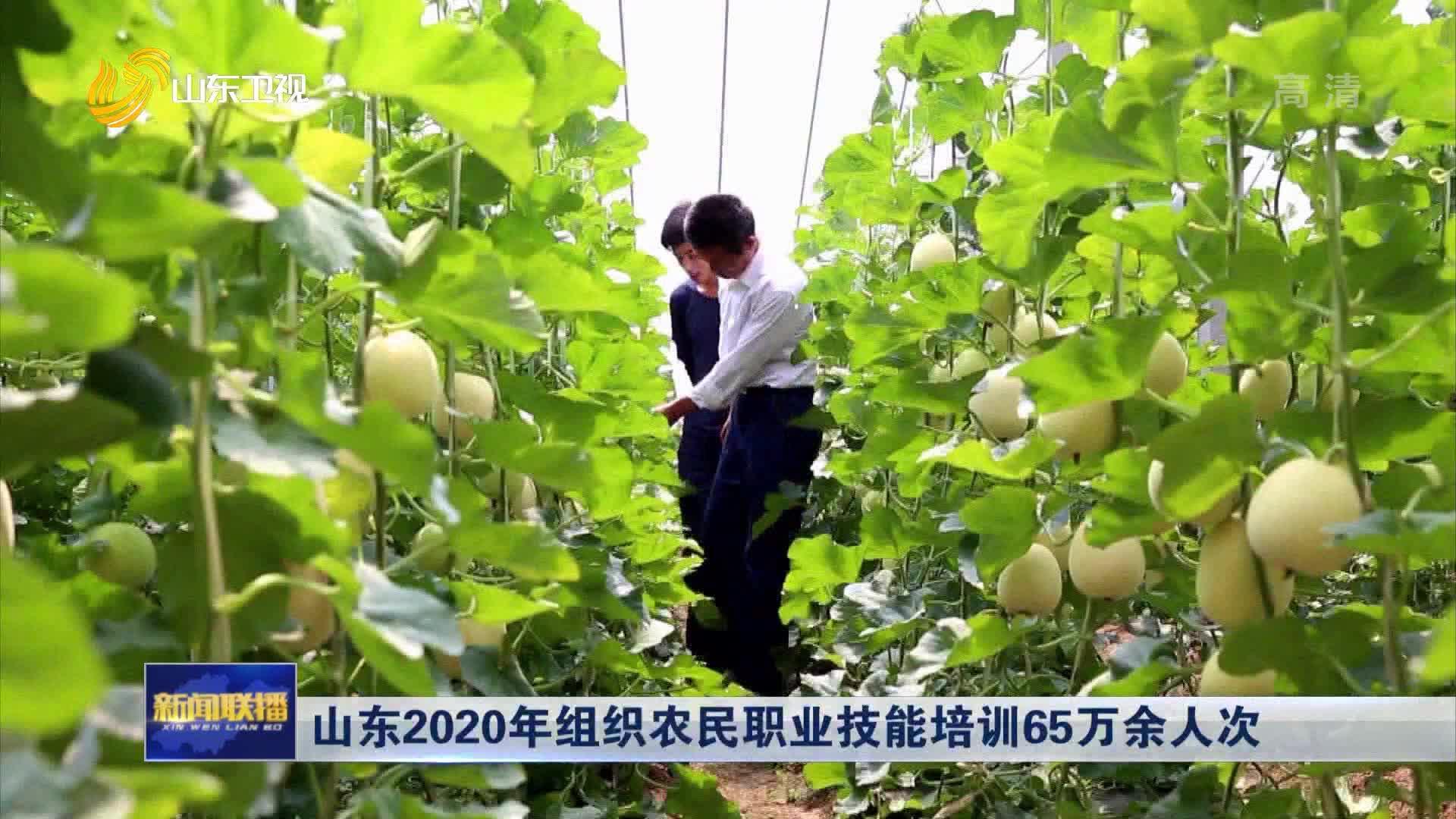 山东2020年组织农民职业技能培训65万余人次