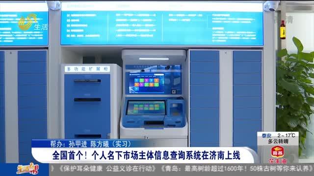 全国首个!个人名下市场主体信息查询系统在济南上线