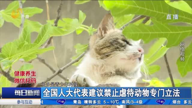 全国人大代表建议禁止虐待动物专门立法