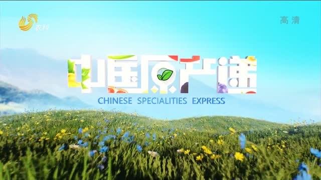 20210304《中国原产递》:章丘铁锅