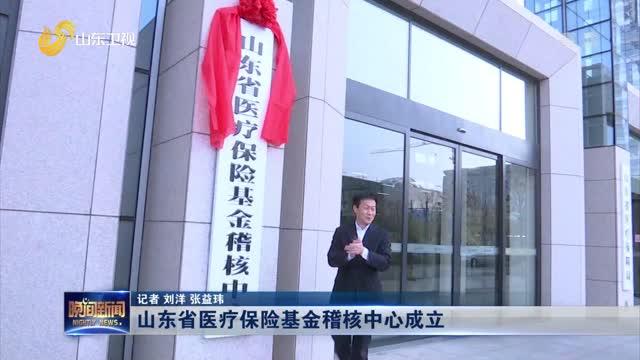 山东省医疗保险基金稽核中心成立