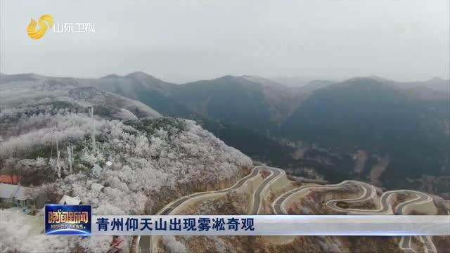 青州仰天山出现雾凇奇观