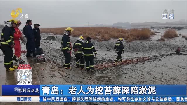 青岛:老人为挖苔藓深陷淤泥