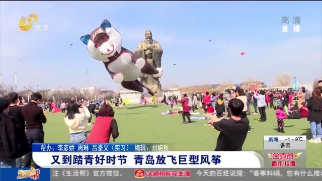 又到踏青好时节 青岛放飞巨型风筝
