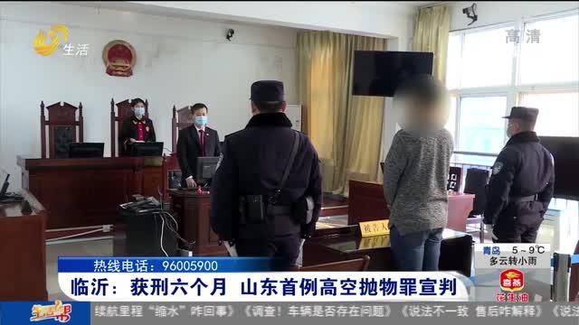 临沂:获刑六个月 山东首例高空抛物罪宣判