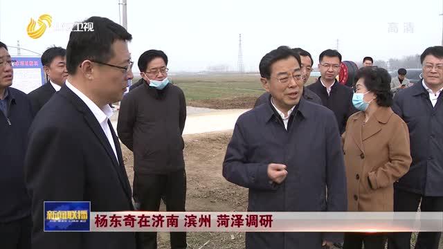杨东奇在济南 滨州 菏泽调研