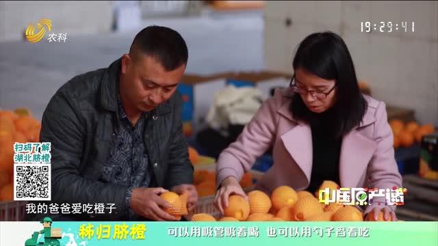 20210311《中国原产递》:秭归脐橙