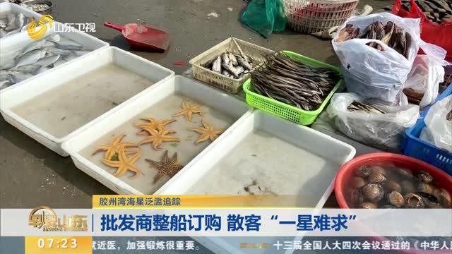 """青岛允许养殖户临时使用""""地笼网""""清理海星"""