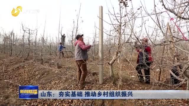 山东:夯实基础 推动乡村组织振兴