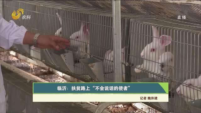 """【齐鲁畜牧】临沂:扶贫路上""""不会说话的使者"""""""