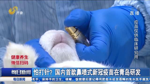 怕打针?国内首款鼻喷式新冠疫苗在青岛研发