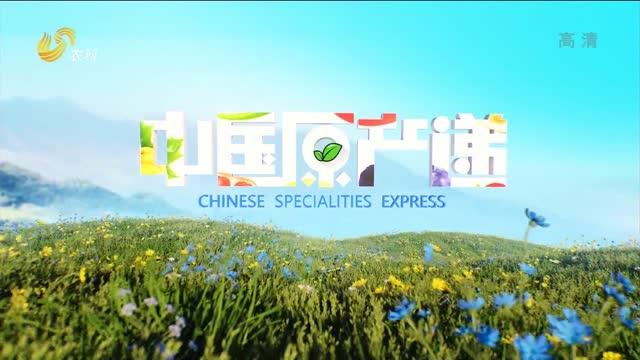 20210319《中国原产递》:鲜椒酱