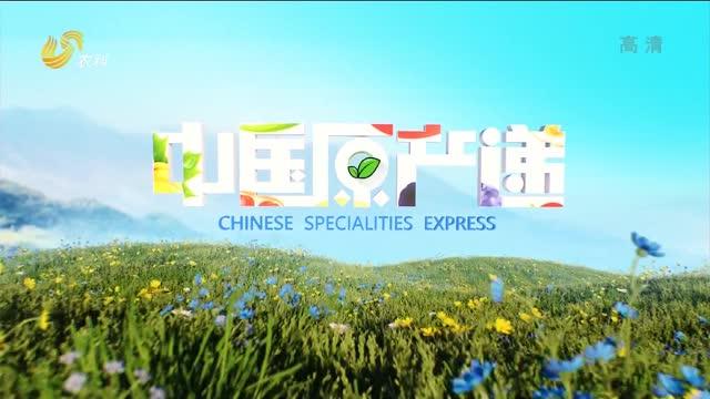 20210322《中国原产递》:秭归脐橙