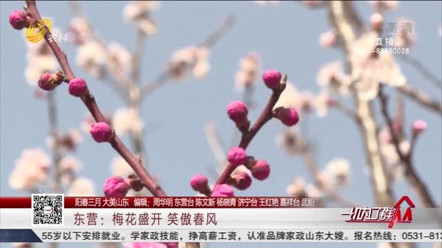 【阳春三月 大美山东】东营:梅花盛开 笑傲春风