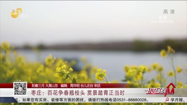 【阳春三月 大美山东】枣庄:百花争春翘枝头赏景踏青正当时