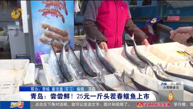 青岛:尝尝鲜!25元一斤头茬春鲅鱼上市