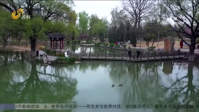 青州:阳水春色醉游人