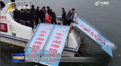1400多万尾优质鱼苗投放东平湖