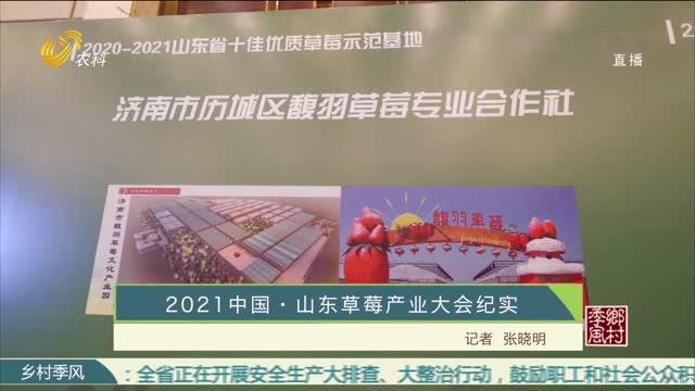 2021中国·山东草莓产业大会纪实