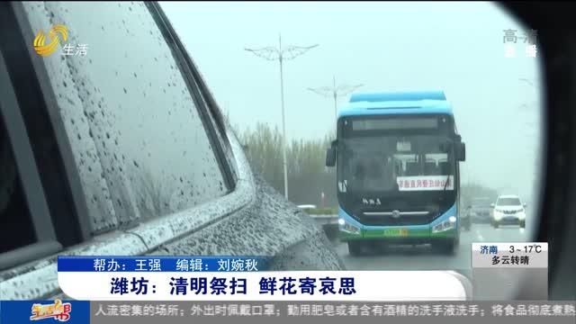潍坊:清明祭扫 鲜花寄哀思