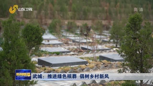 武城:推进绿色殡葬 倡树乡村新风