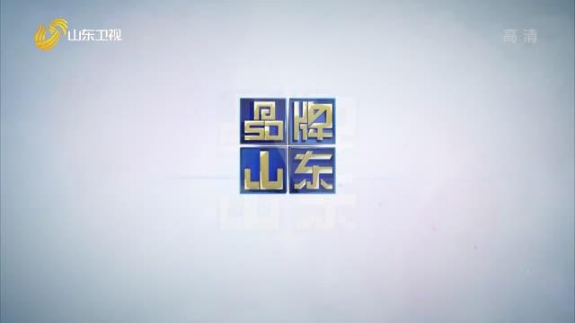 2021年04月04日《品牌山东》完整版