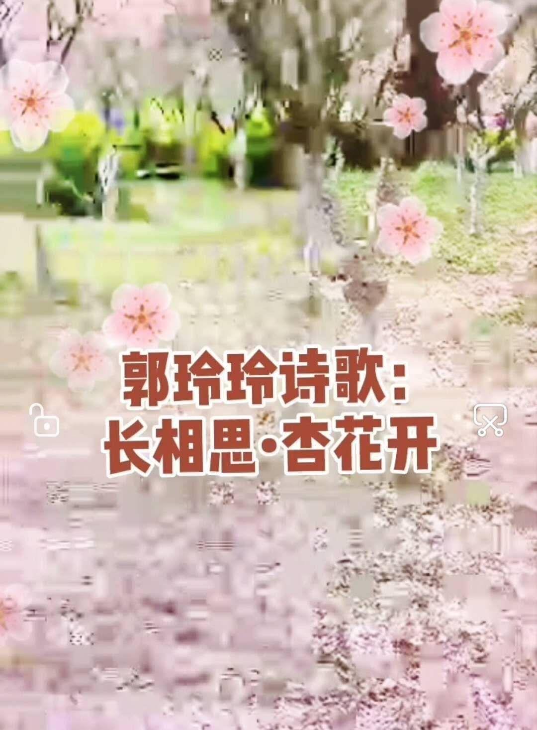 诗歌朗诵:长相思•杏花开 作者/郭玲玲 朗诵:吴玲