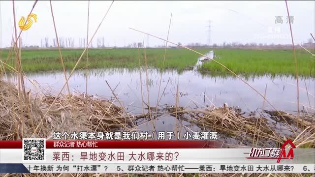 【群众记者 热心帮忙】莱西:旱地变水田 大水哪来的?