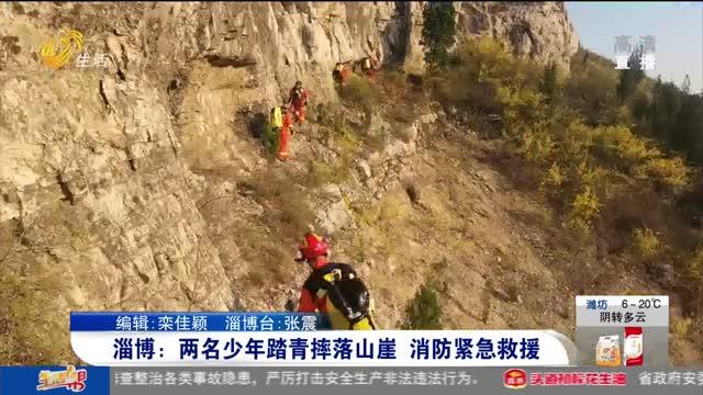 淄博:两名少年踏青摔落山崖 消防紧急救援