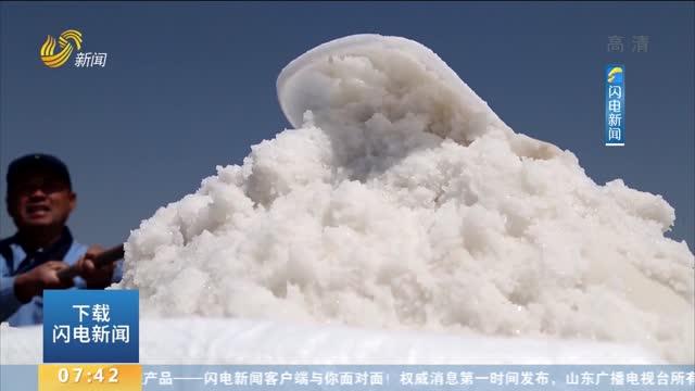 青岛:盐场收春盐 粒粒皆辛苦