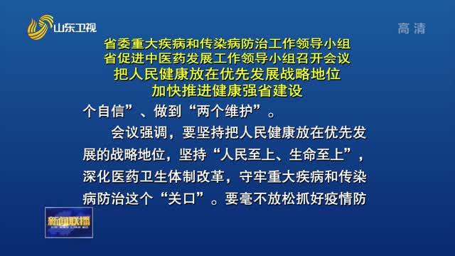 省委重大疾病和传染病防治工作领导小组、省促进中医药发展工作领导小组召开会议