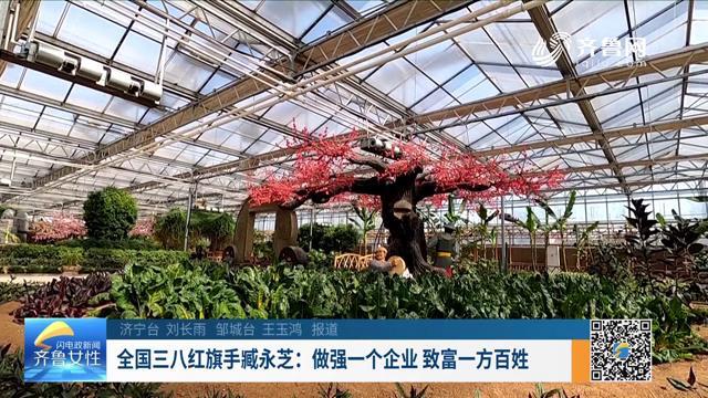 全国三八红旗手臧永芝:做强一个企业 致富一方百姓