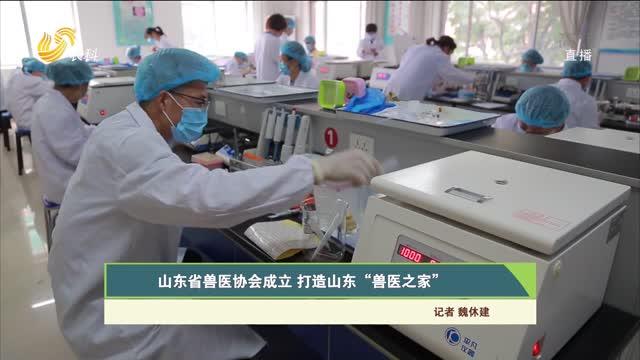 """山东省兽医协会成立 打造山东""""兽医之家"""""""
