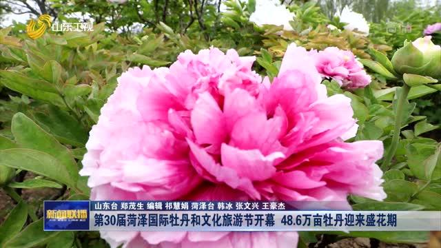 第30届菏泽国际牡丹和文化旅游节开幕 48.6万亩牡丹迎来盛花期