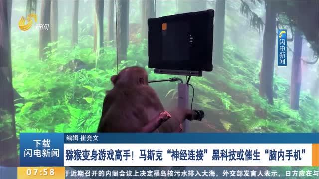 """猕猴变身游戏高手!马斯克""""神经连接""""黑科技或催生""""脑内手机"""""""