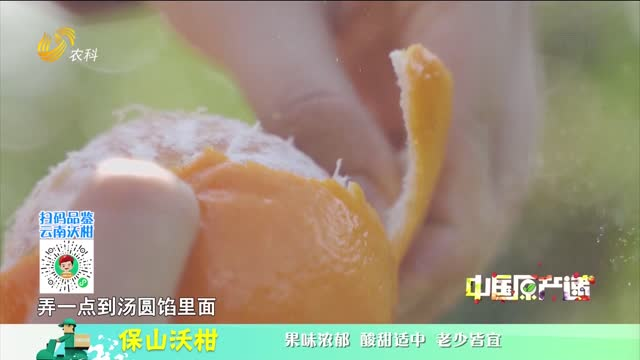 20210410《中国原产递》:保山沃柑