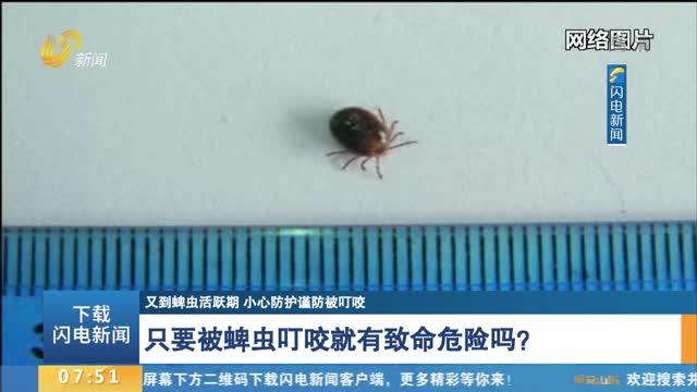 【又到蜱虫活跃期 小心防护谨防被叮咬】只要被蜱虫叮咬就有致命危险吗?