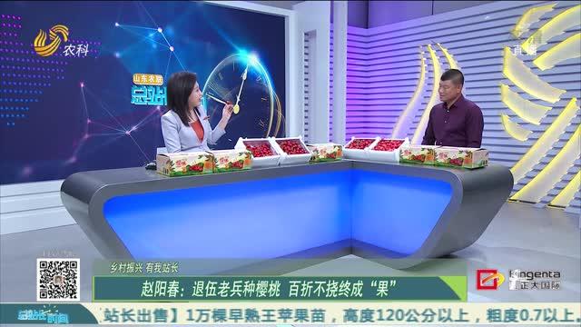 """20210411《总站长时间》:赵阳春——退伍老兵种樱桃 百折不饶终成""""果"""""""