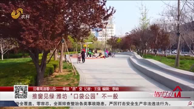 """【沿着高速看山东——幸福""""居""""变】推窗见绿潍坊""""口袋公园""""不一般"""