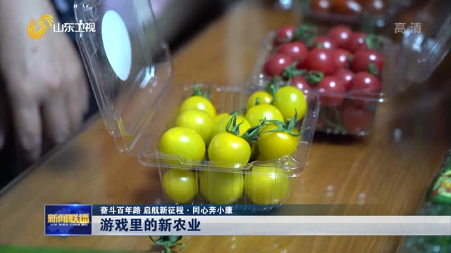 【奋斗百年路 启航新征程·同心奔小康】游戏里的新农业