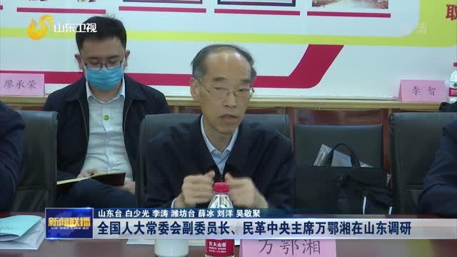 全国人大常委会副委员长、民革中央主席万鄂湘在山东调研