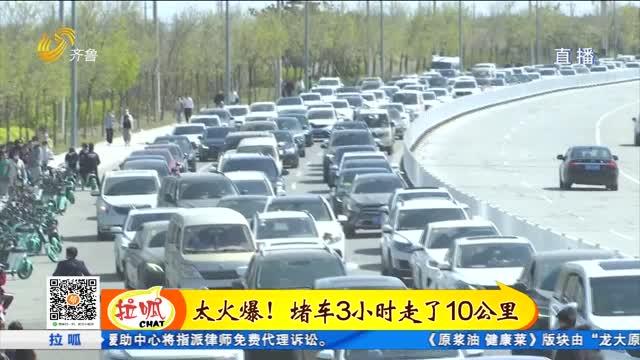 潍坊国际风筝会太火爆!七千米超大风筝亮相