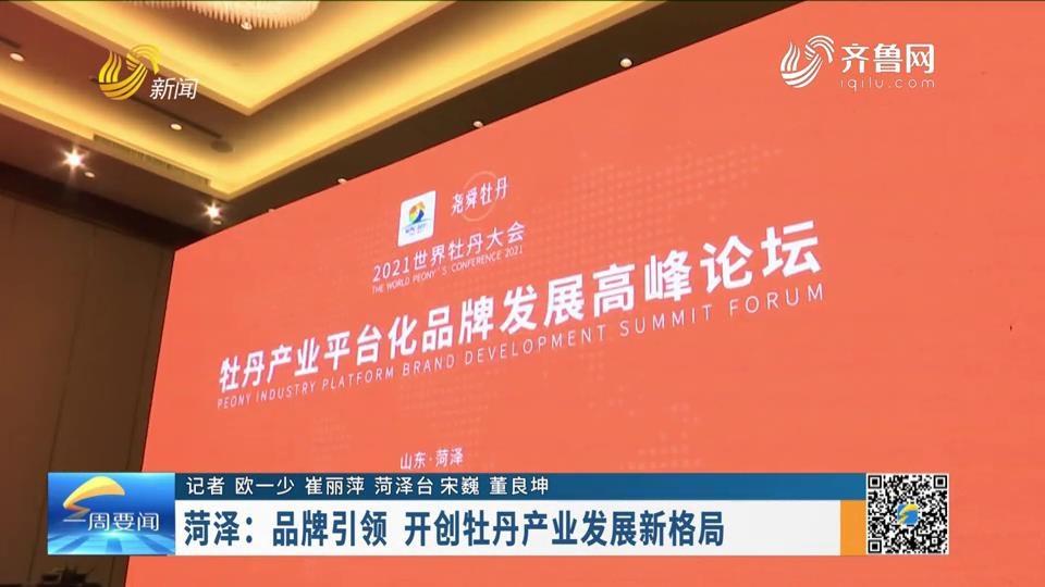 菏泽:品牌引领 开创牡丹产业发展新格局