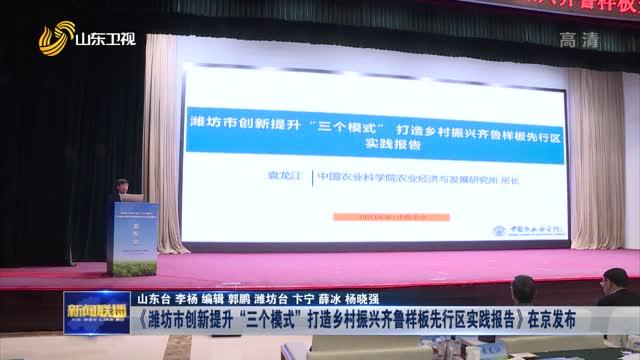 """《潍坊市创新提升""""三个模式""""打造乡村振兴齐鲁样板先行区实践报告》在京发布"""