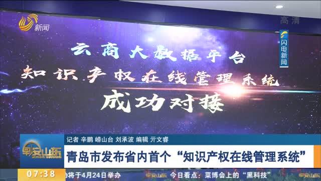 """青岛市发布省内首个""""知识产权在线管理系统"""""""