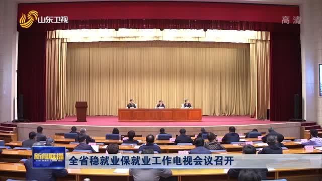 全省稳就业保就业工作电视会议召开