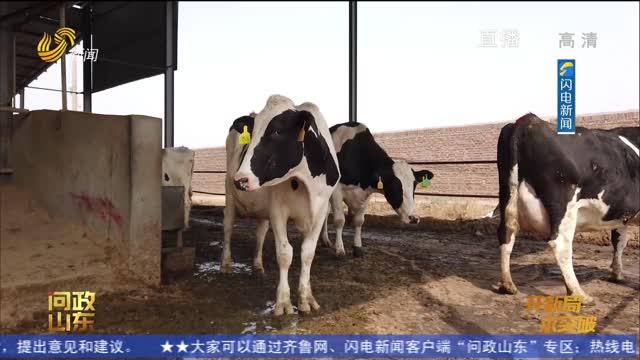 【问政山东】农村能源生态项目投资千万快废了 东营市垦利区区长:尽快解决