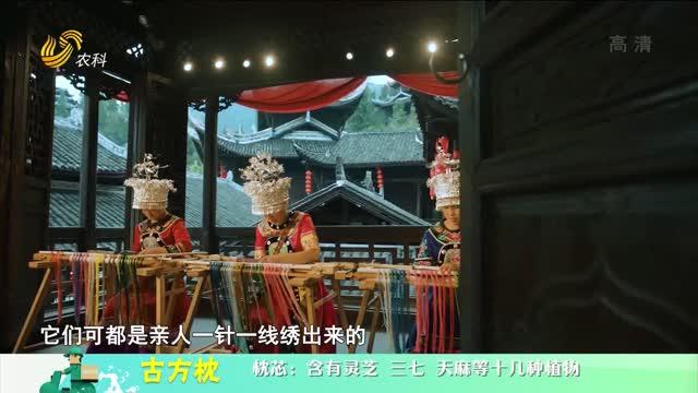 20210422《中国原产递》:古方枕